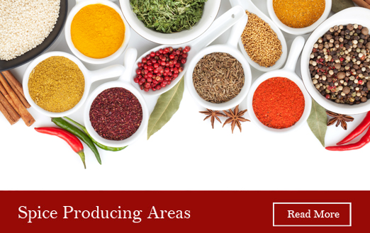 spice-producing-areas